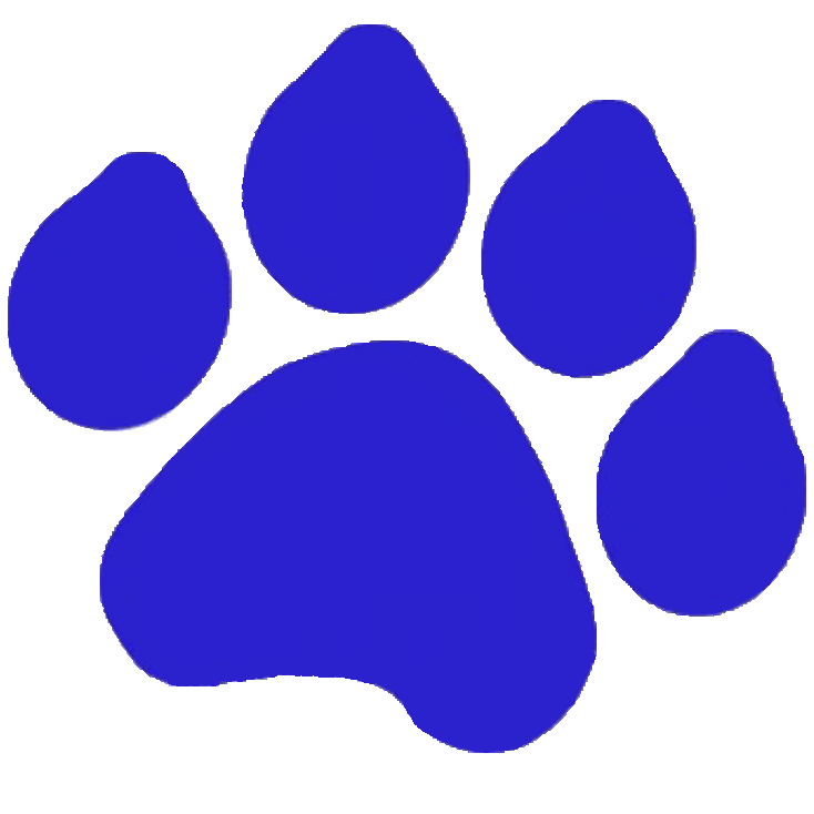 riley paw logo button to spirit wear shop