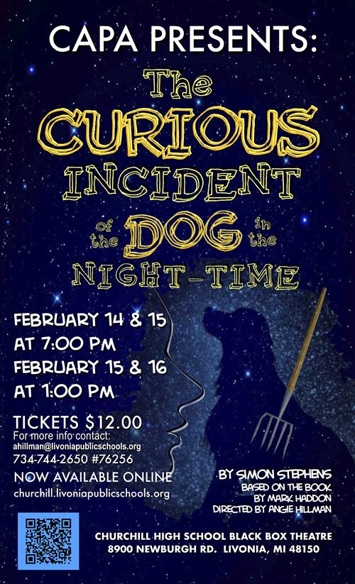 Play poster for Curious Incident